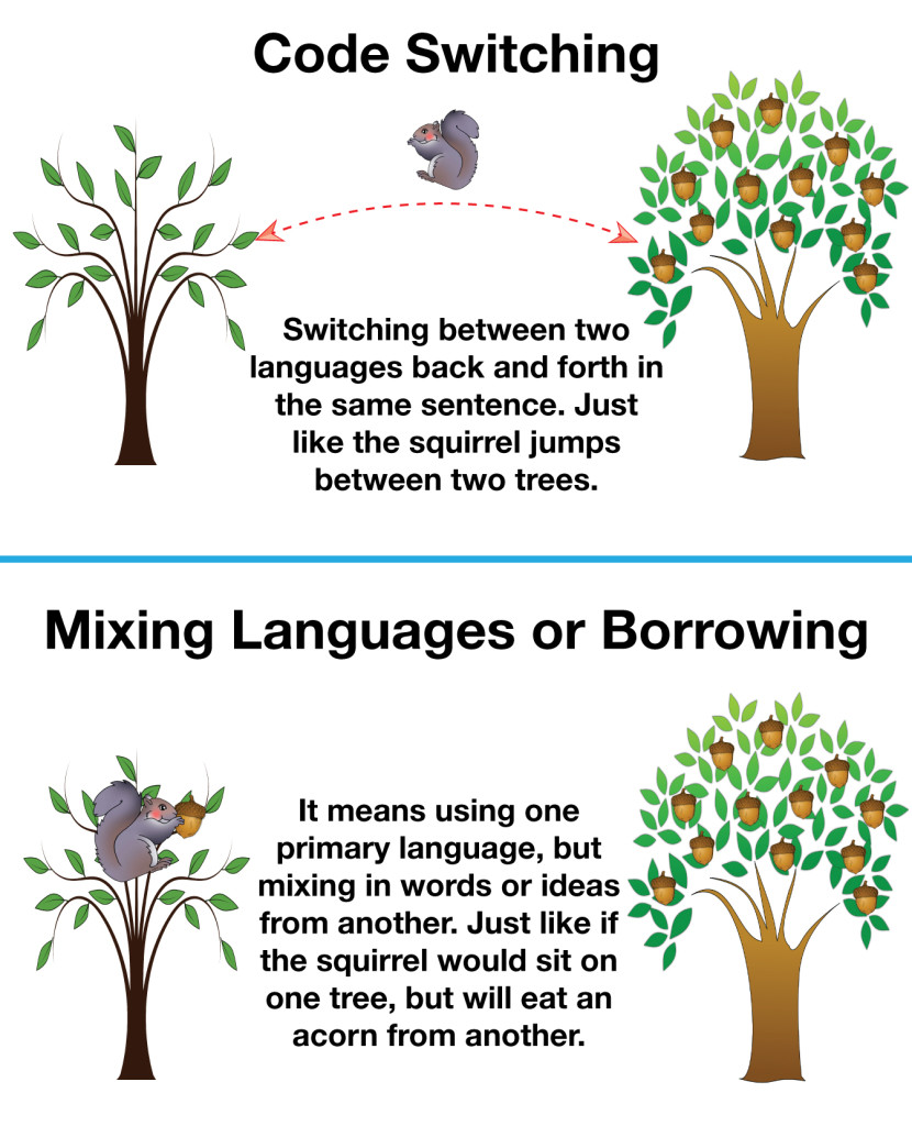 Code-Switching vs Borrowing